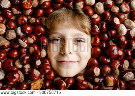 Funny Portrait Of Preteen Or School Kid Boy With Lots Of Chestnuts. Smiling Happy Child Having Fun O