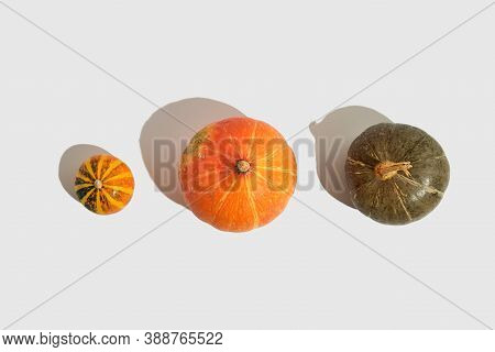 Pumpkin Top On White Background. Flat Lay, Top View. Isolated Background. Autumn Background. Healthy