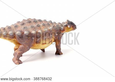 Ankylosaurus Is A Herbivore Genus Of Armored Dinosaur, The Dinosaur From The Very End Of The Cretace