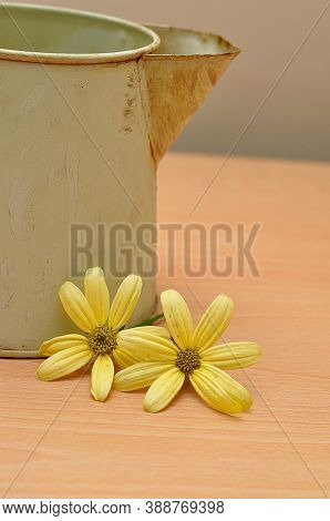A Close Up Of A Rusty Old Mug On A Table With Yellow Daisies