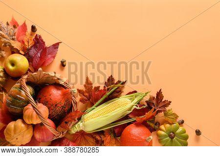 Autumn Harvest In Basket, Pumpkins, Apple, Corncob, Colorful Leaves On Orange Background With Space