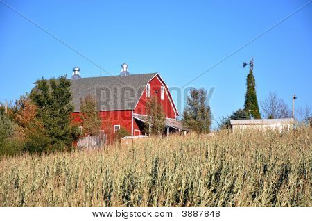 Farm: Red Barn, Blue Skies, Windmill & Corn Field