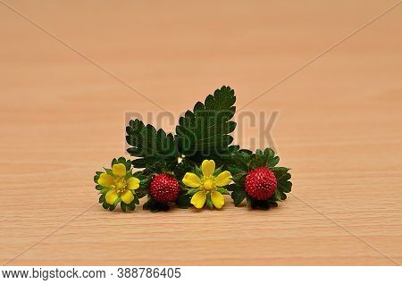 Two Red Strawberries With Two Yellow Flower On A Table