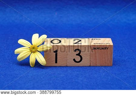 13 January On Wooden Blocks With A Yellow Flower On A Blue Background