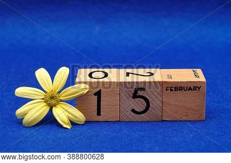 15 February On Wooden Blocks With A Yellow Flower On A Blue Background