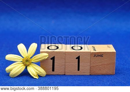 11 June On Wooden Blocks With A Yellow Flower On A Blue Background
