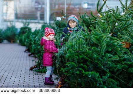 Two Little Siblings Toddler Girl And Kid Boy Holding Christmas Tree On A Market. Happy Children In W