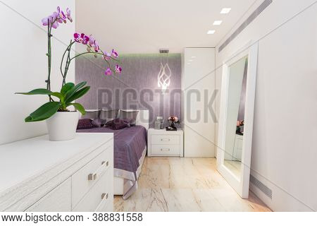 Modern Luxury Bedroom With Mirror,  Home Renovation