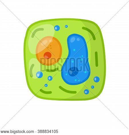 Green Cell Of The Plant. Element Of Science And Biology. Cartoon Flat Illustration. Microorganism By