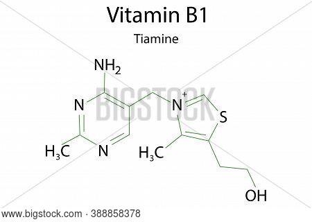 Vitamin B1 Formula For Healthcare Design. Thiamin As A Healthy Food. Vector Illustration.