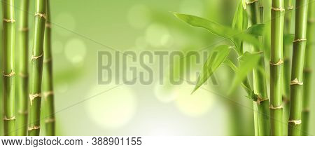 Beautiful Spa Background With Bamboo And Bokeh