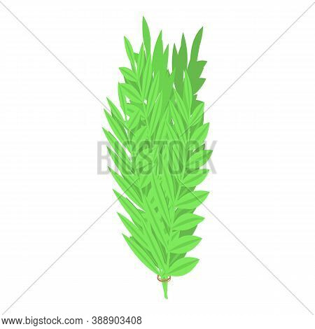 Rosemary Branch Icon. Isometric Of Rosemary Branch Vector Icon For Web Design Isolated On White Back