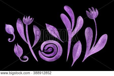 Set With Purple Autumn Flowers, Leaves, Buds Isolated On Black. Boho Watercolor In Trendy Earthy Col