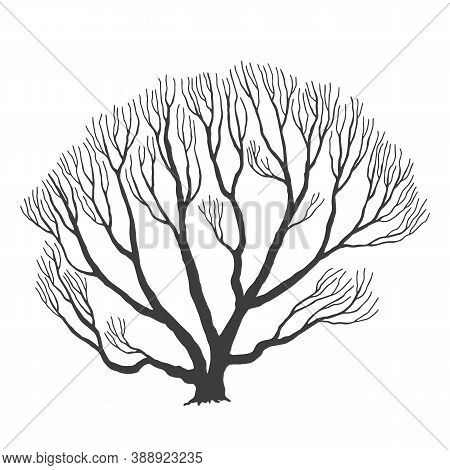 Tree, Many Branches, Halloween Design Vector Drawing