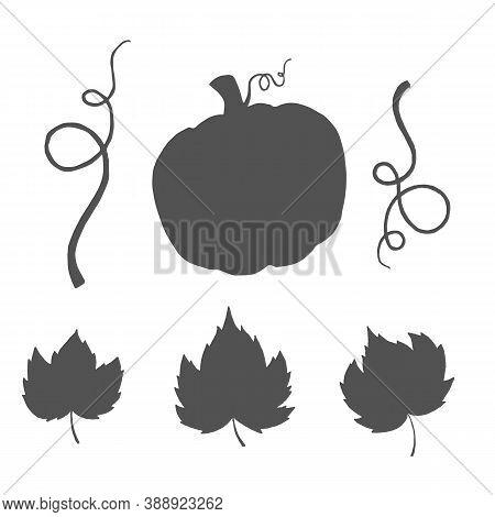 Set Vector Pumpkin, Leaves, Silhouette For Halloween Design