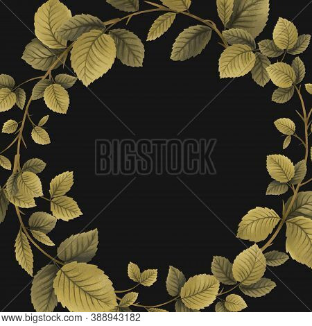 Raspberry Plant, Leaves Branch In And Berries, Template Frame, Drawing