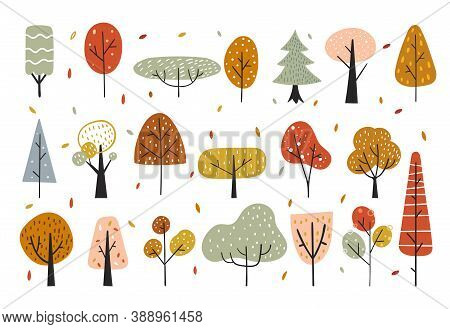 Autumn Decorative Elements With Abstract Trees, Forest Elements. Creative Height Woodland Detailed B