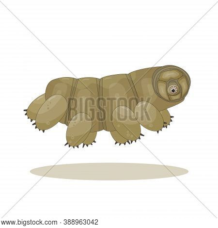 Brown Isolated Cute Cartoon Tardigrade Is Running On White Background