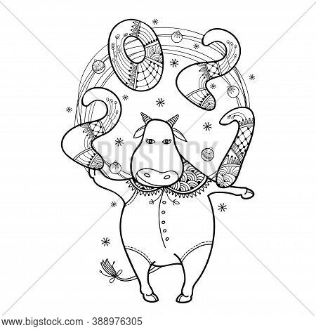 Vector Greeting With Outline Cute Bull With Number 2021 In Black Isolated On White Background. Conto