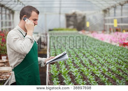 Gardener calling and taking notes for stocktaking in greenhouse nursery