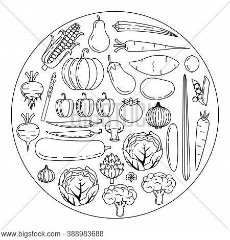 Healthy Fresh Vegetables, Outline Sketch For Color Fill, Vegan,