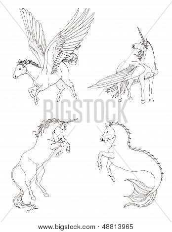 Fantasy Horse Collection Set In Black And White Drawing