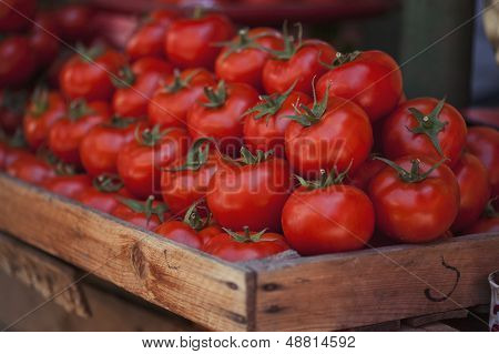 Ttomatoes At Market