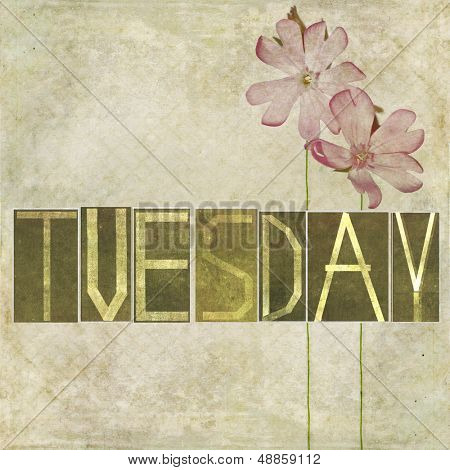 """Earthy texture background and design element depicting the word """"Tuesday"""""""
