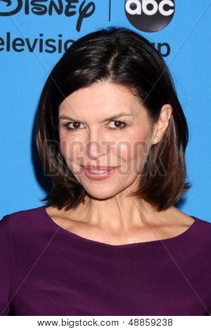 LOS ANGELES - AUG 4:  Finola Hughes arrives at the ABC Summer 2013 TCA Party at the Beverly Hilton Hotel on August 4, 2013 in Beverly Hills, CA