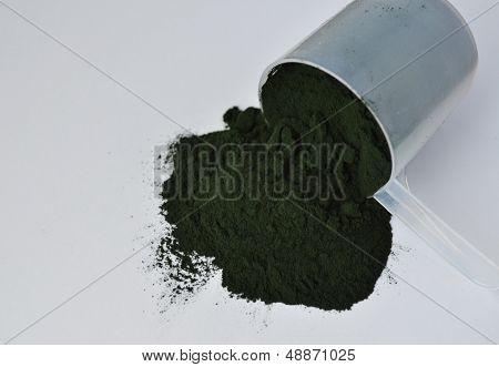 Blue-green algae spirulina powder on a white background. poster