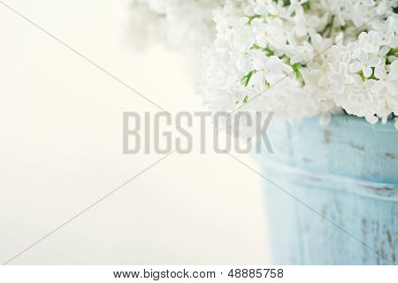 Bouquet Of White Lilac Spring Flowers