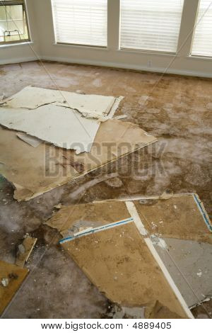 Water Leaking Damaged Home
