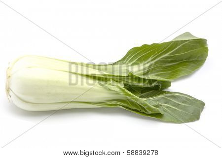 chinese cabbage isolated on white background