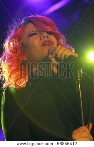 SOLANA BEACH, CA - JAN. 15: Allison Iraheta performs on January 15, 2014 at the Belly Up Tavern in Solana Beach, CA.
