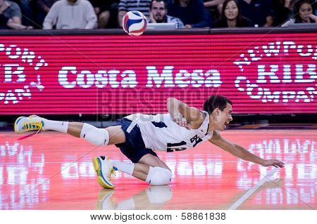 IRVINE, CA - JANUARY 17: Brigham Young University's Jalen Reyes dives for the dig in a volleyball match with the University of California - Irvine at the Bren Center in Irvine, CA on January 17, 2014