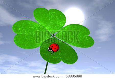 Ladybird On A Four-leaves Clover