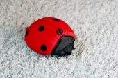 In a photo the ladybird, red with black stains is represented. Is an ornament for the house, for an interior. poster
