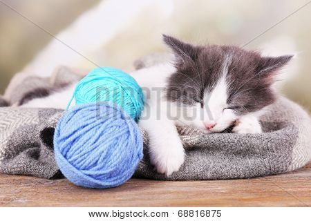 Cute little kitten sleeping on plaid, on bright background poster