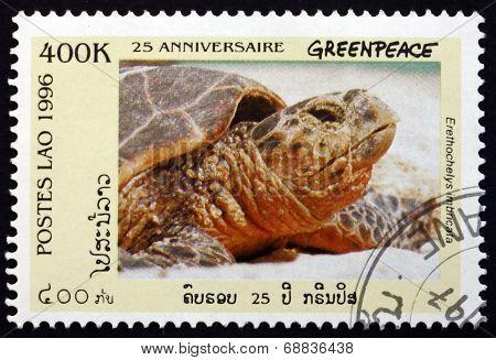 Postage Stamp Laos 1996 Hawksbill Sea Turtle