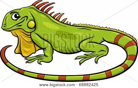 Iguana Animal Cartoon Illustration