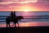 Horseback riding at sunset on the beach in Costa Rica poster