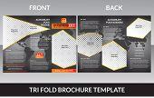 abstract tri fold brochure concept vector illustrator poster