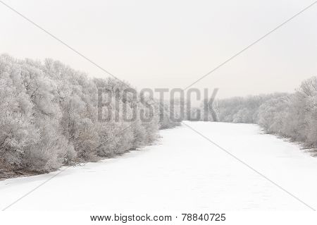 River Covered With Ice And Trees In Rime Frost