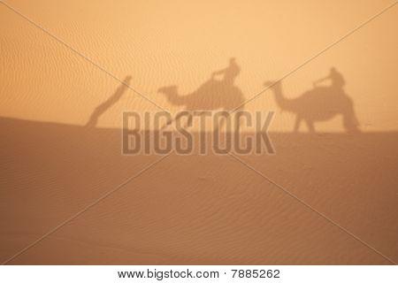 Camel Shadows On  Sahara Sand.