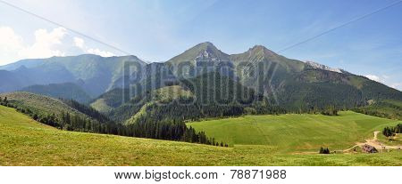 panoramic view of the mountains in the summer, Belianske Tatras, Slovakia, Europe poster