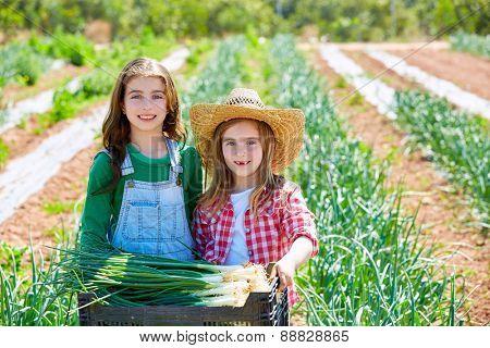 Litte kid farmer girls in onion harvest at orchard