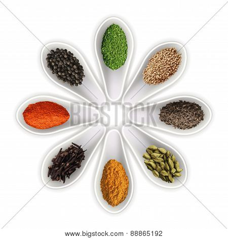 Spices In The Spoons Isolated On White Vector