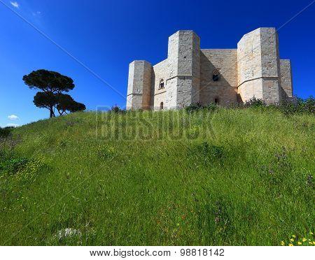 Castel del Monte castrum Sancta Maria de Monte Apulia Italy poster
