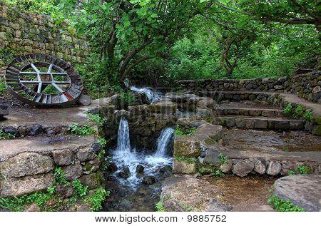 Quiet Corner Of Nature