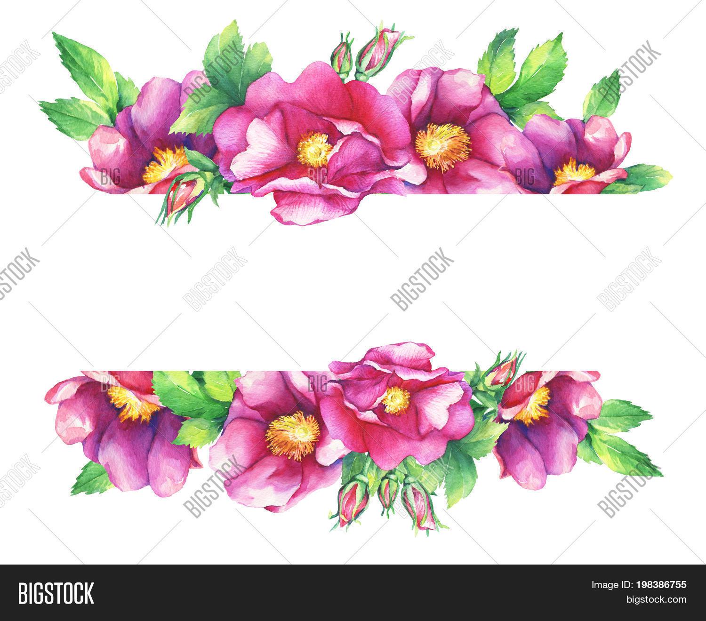 Banner Flowering Pink Image & Photo (Free Trial) | Bigstock